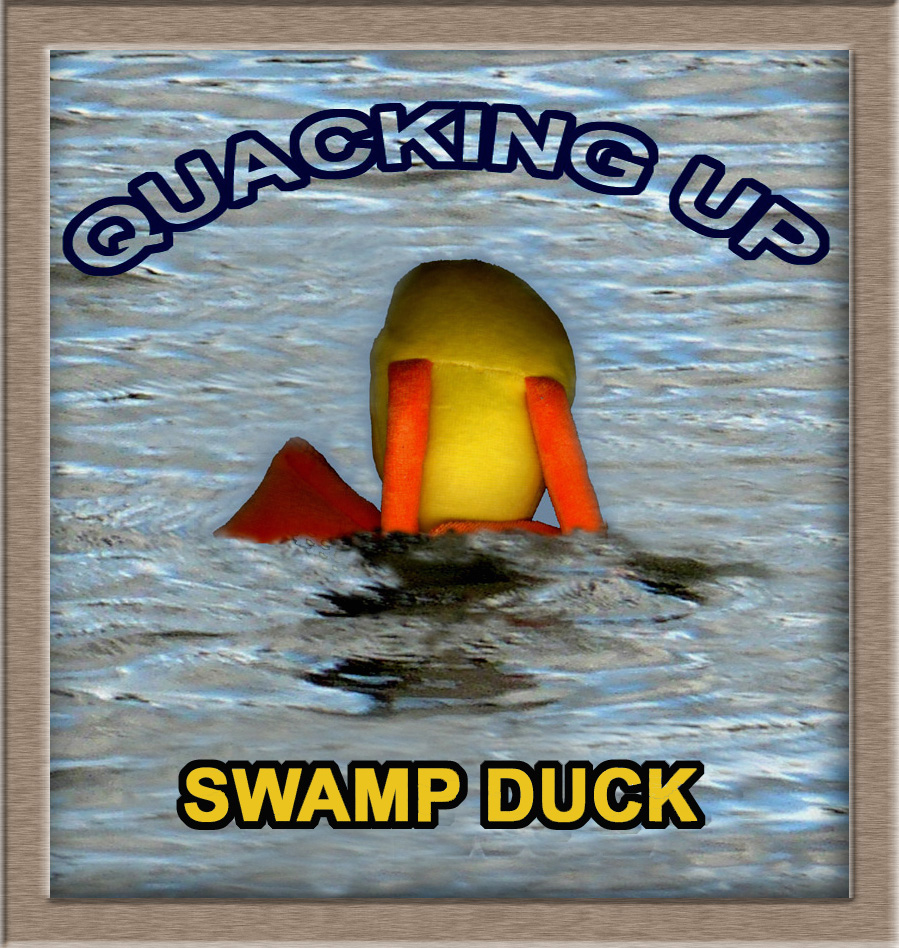 Buy the new Swamp Duck CD Quacking Up